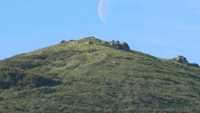 San Bruno Mountain- Owl Canyon